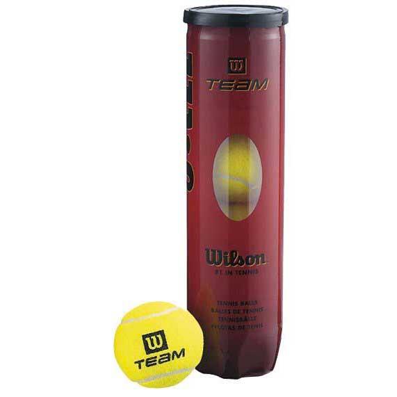 Balles tennis Wilson Team Practice