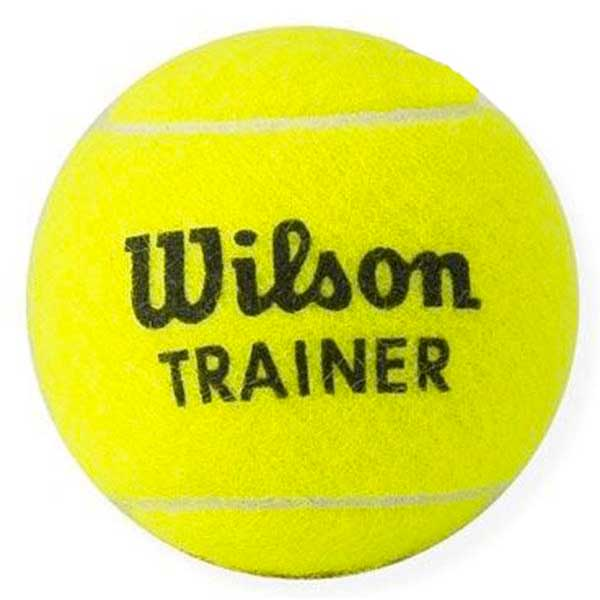 Wilson Trainer Polybag