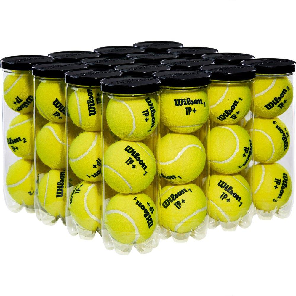 Balles tennis Wilson Tp Box