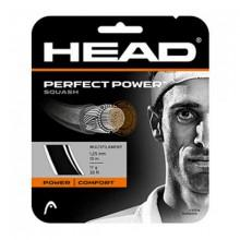 Head Perfect Power Squash