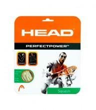 Head Perfect Power Squash 16 10 M.